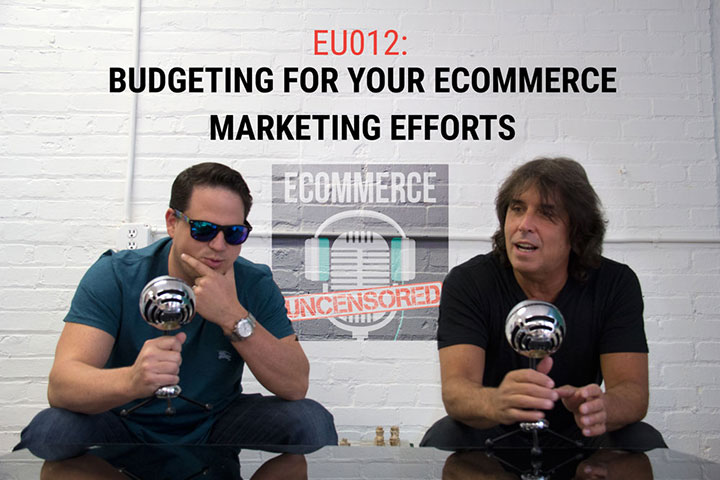 EU012: Budgeting for Your eCommerce Marketing Efforts